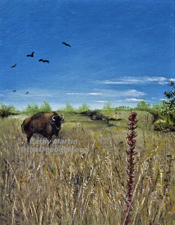 Buffalo by artist Cathy Martin