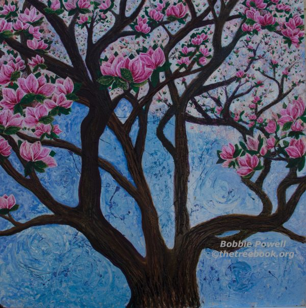 Magnolia by artist Bobbie Powell The Treebook Project