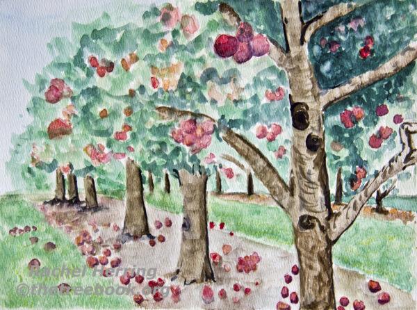 Apple Tree by artist Rachel McLaughlin the Treebook Project